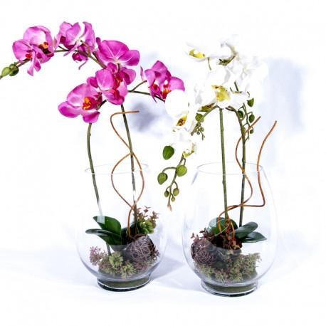 Composition : Vase verre + orchidées blanche ou fushia